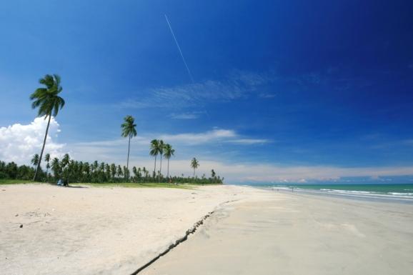 beachside_car_camping
