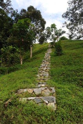 activity-stairs-climb