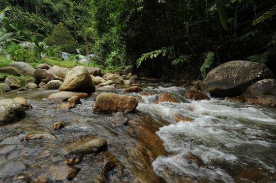 Tanah_Aina_Farrah_Soraya_Eco_Tourism_Resort_1sungai-delam