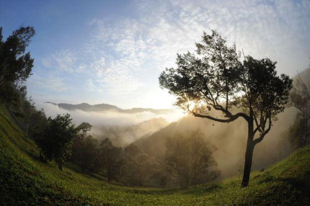 Tanah_Aina_Farrah_Soraya_Eco_Tourism_Resort_morning_view