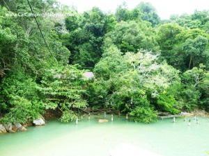 Teluk-Bahang-Taman-Negara-Penang-car-camping-malaysia-5