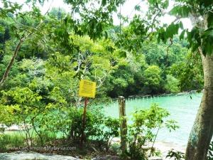 Teluk-Bahang-Taman-Negara-Penang-car-camping-malaysia-6