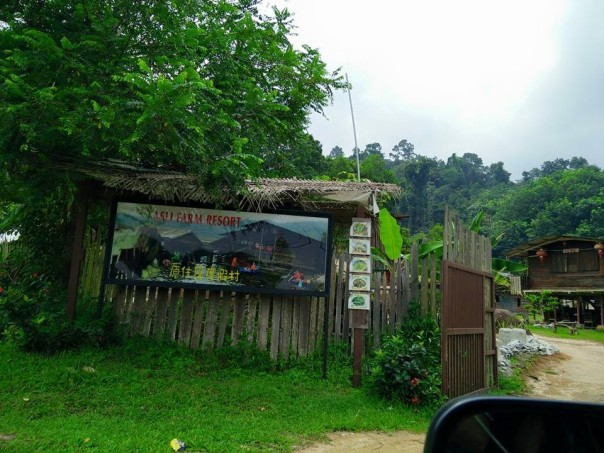 asli-farm-resort-semenyih-malaysia-car-camping-5