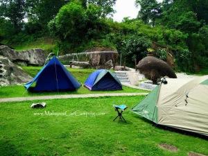 camping-asli-farm-resort-semenyih-malaysia-car-camping-18