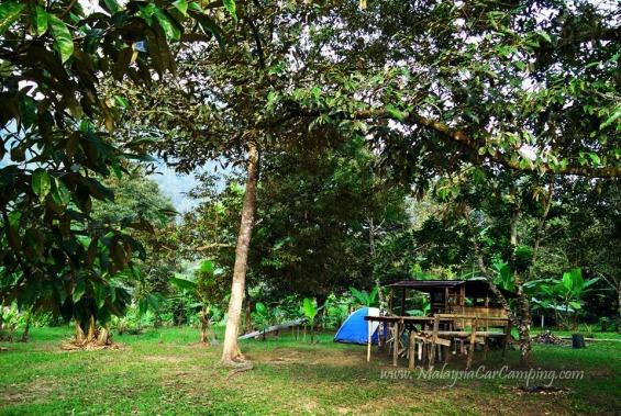 malaysia-car-camping-ubipadi-leisure-farm-hulu-langat (27)