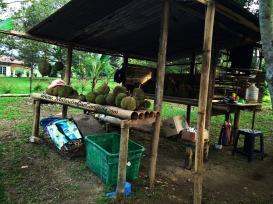 malaysia-car-camping-ubipadi-leisure-farm-hulu-langat (28)