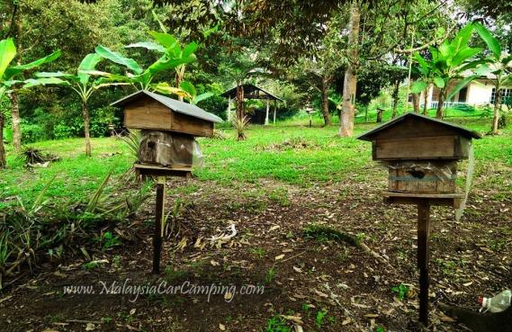 malaysia-car-camping-ubipadi-leisure-farm-hulu-langat (30)
