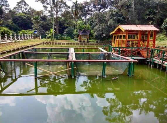 malaysia-car-camping-ubipadi-leisure-farm-hulu-langat (5)