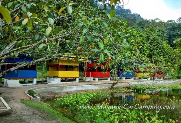 malaysia-car-camping-ubipadi-leisure-farm-hulu-langat (7)